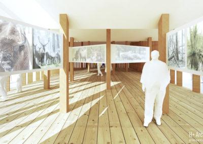 Pawilon wystawowy | Ekspozycja | H+ Architektura